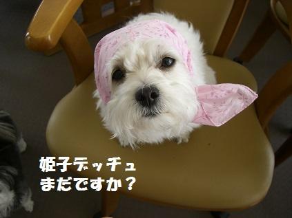 姫子ほっかむり2
