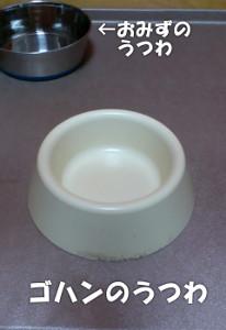 140725_bowl.jpg