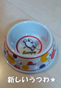 140725_bowl2.jpg