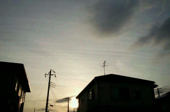 img20140210_縞雲.jpg