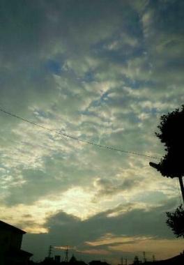 img20140327_夕日が見えない.jpg