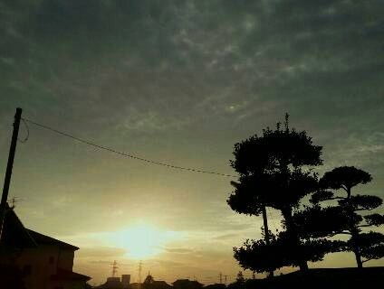 img20140329_穏やかな夕日.jpg
