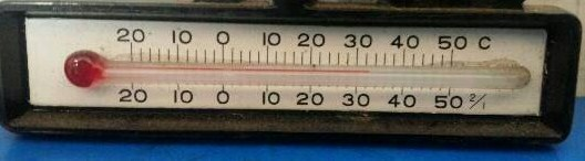 img20140531_室温.jpg