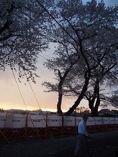 asagaya-street295.jpg