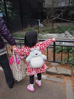 inokashira-zoo75.jpg