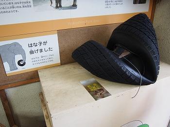 inokashira-zoo95.jpg