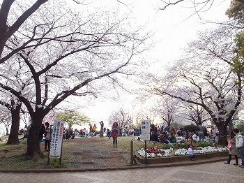 meguro-street18.jpg