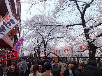meguro-street22.jpg