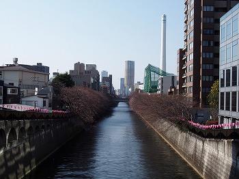 meguro-street28.jpg