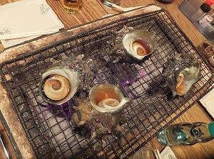 musashino-torobako5.jpg