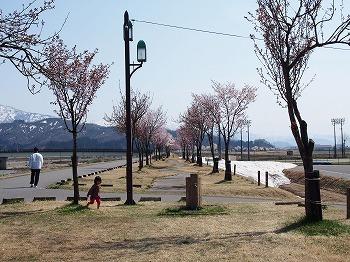uonuma-street461.jpg