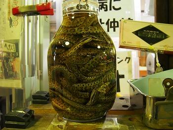 utsunomiya150.jpg