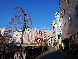 utsunomiya86.jpg
