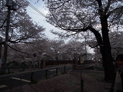zenpukuji-river48.jpg