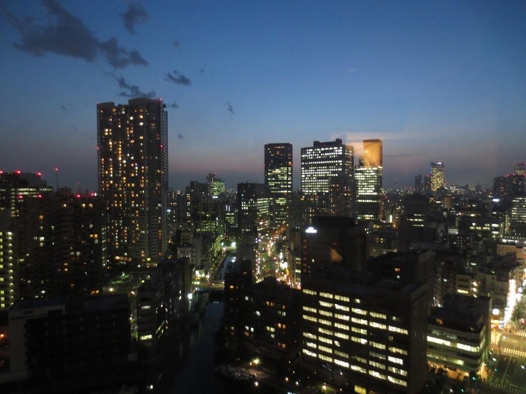 芝浦アイランドグローブタワー眺望