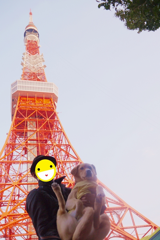 20140316tokyo21.jpg