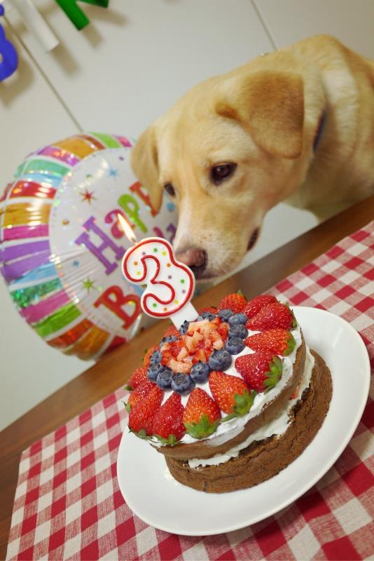 birthday22.jpg