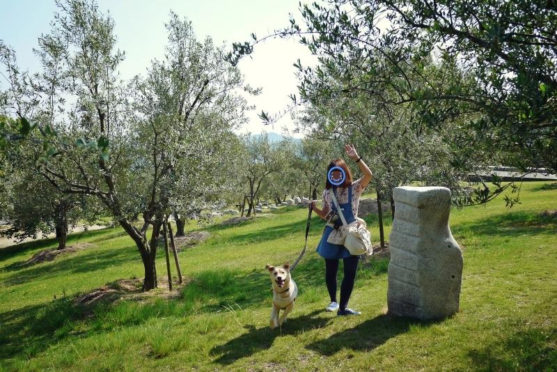 olive05.jpg