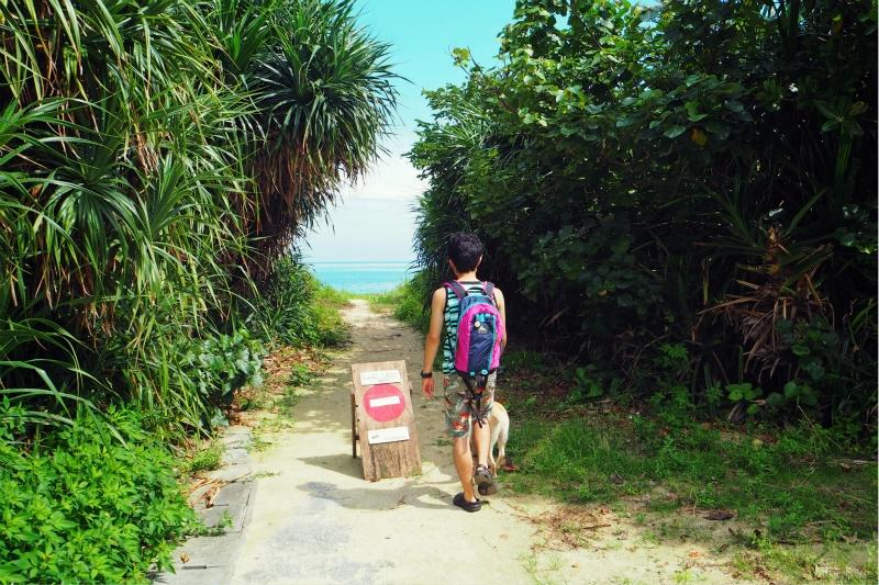 seasideBB20.jpg
