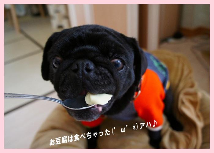 豆腐食べる