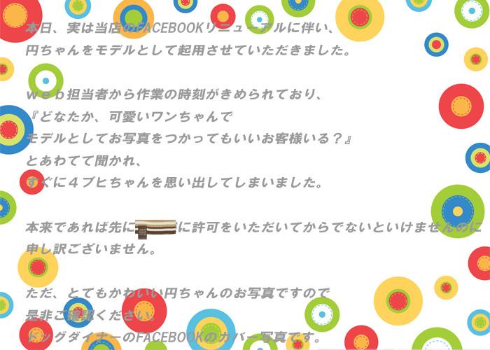 お手紙_edited-1