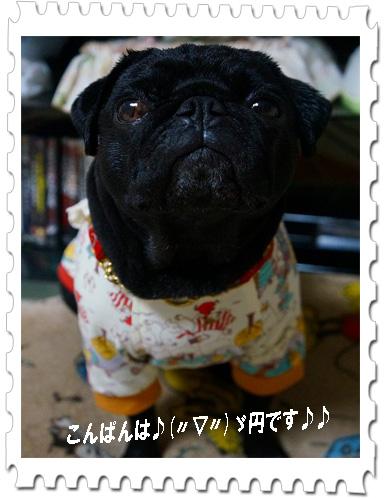 円トップ6.11.