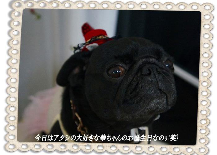 トップ円誕生日