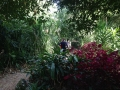 Thursday Plantation 2014 7 アロマスクール マッサージスクール オーストラリア