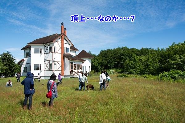 20140615-14.jpg