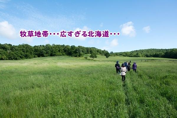 20140615-15.jpg
