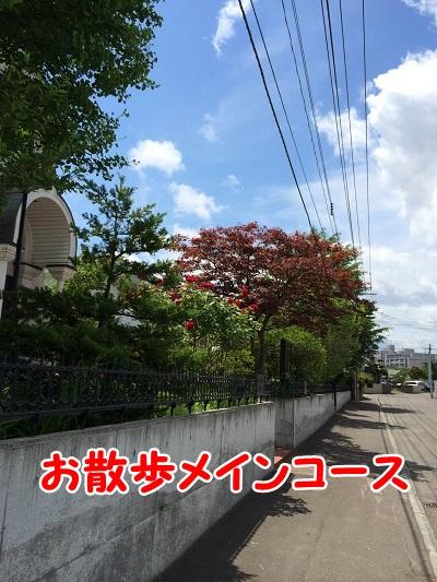 20140630-2.jpg