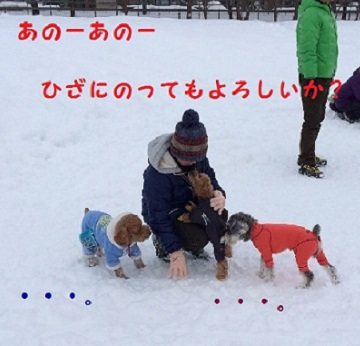 photo4-1.jpg