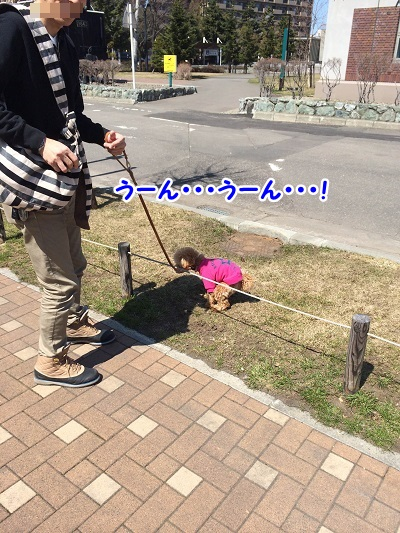 photo6-10.jpg
