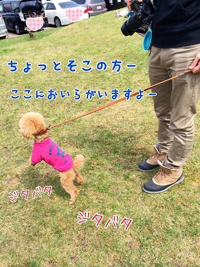 photo6-9.jpg
