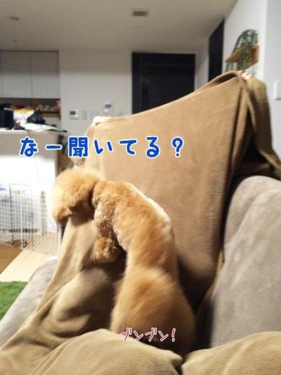 photo7-6.jpg