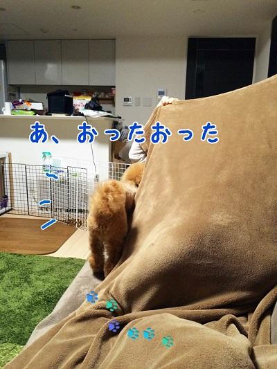 photo7-7.jpg