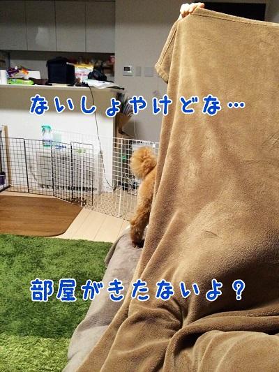 photo7-8.jpg