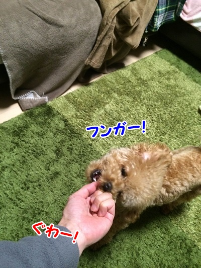 photo8-7.jpg