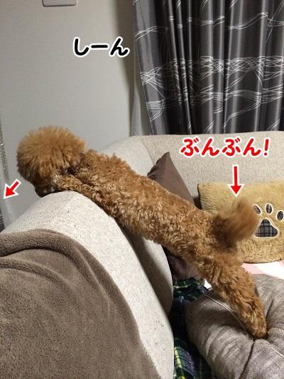 photo9-1.jpg