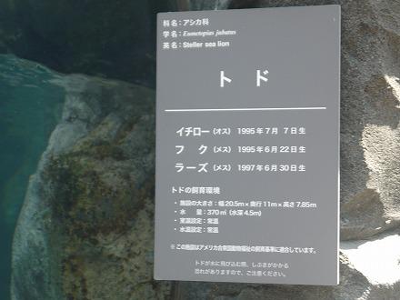 201406176.jpg