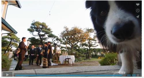 結婚式ビデオパル3