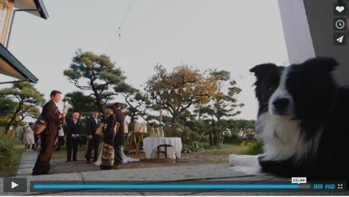 結婚式ビデオパル4