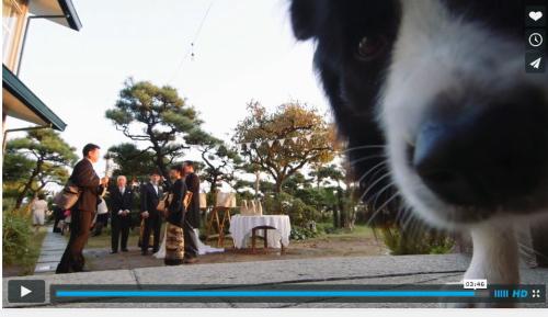 結婚式ビデオパル6