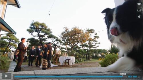 結婚式ビデオパル7
