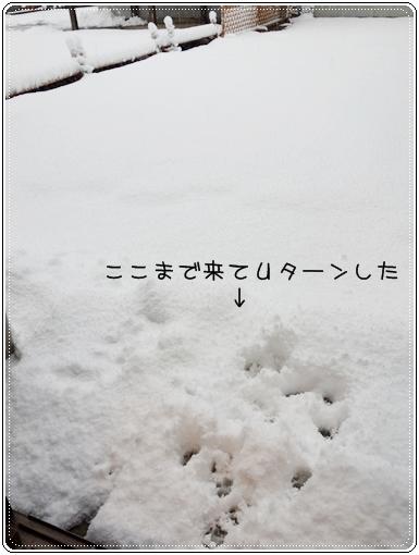 2014 03 10_2905