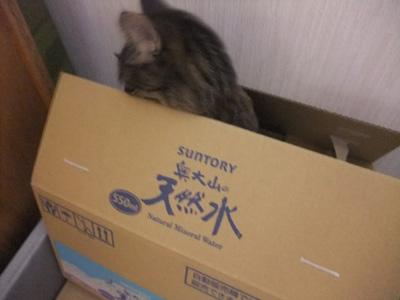 箱の中から③