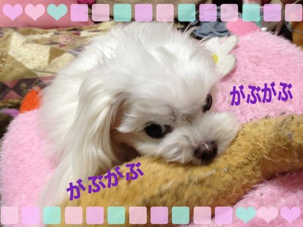 fc2blog_2014052609384716b.jpg