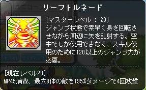 Maple140319_204955.jpg