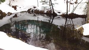 神の子池+雪2_convert_20140305165942