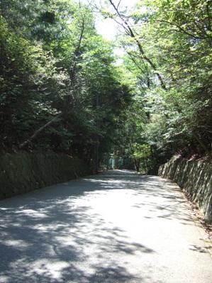 甲山の穴場スポット